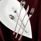Fortessa Dragonfly Flatware 18/10