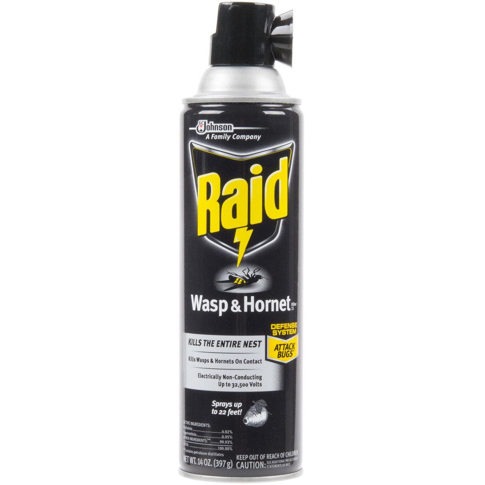 johnson raid 14 oz. aerosol wasp and hornet killer