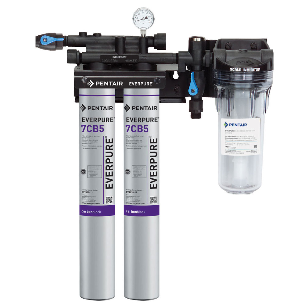 everpure ev9797 22 kleensteam ii twin water filtration