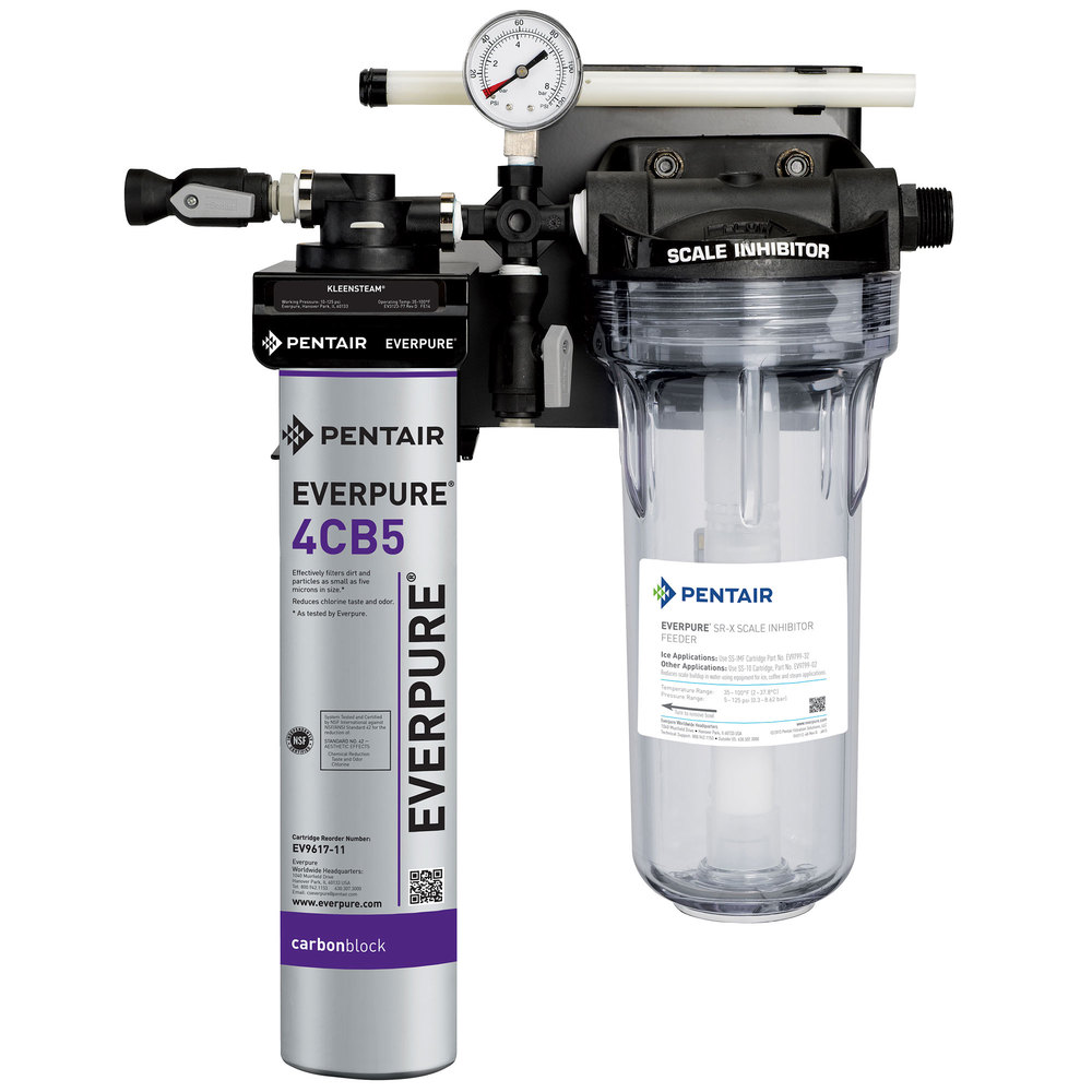 everpure ev9797 50 kleensteam ct water filtration system