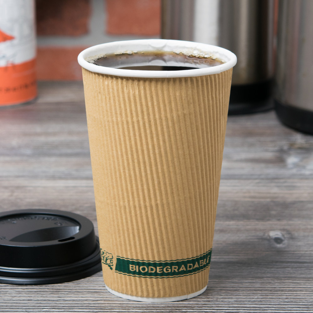 EcoChoice 16 oz. Sleeveless Kraft Compostable and Biodegradable Paper Hot Cup - 500/Case