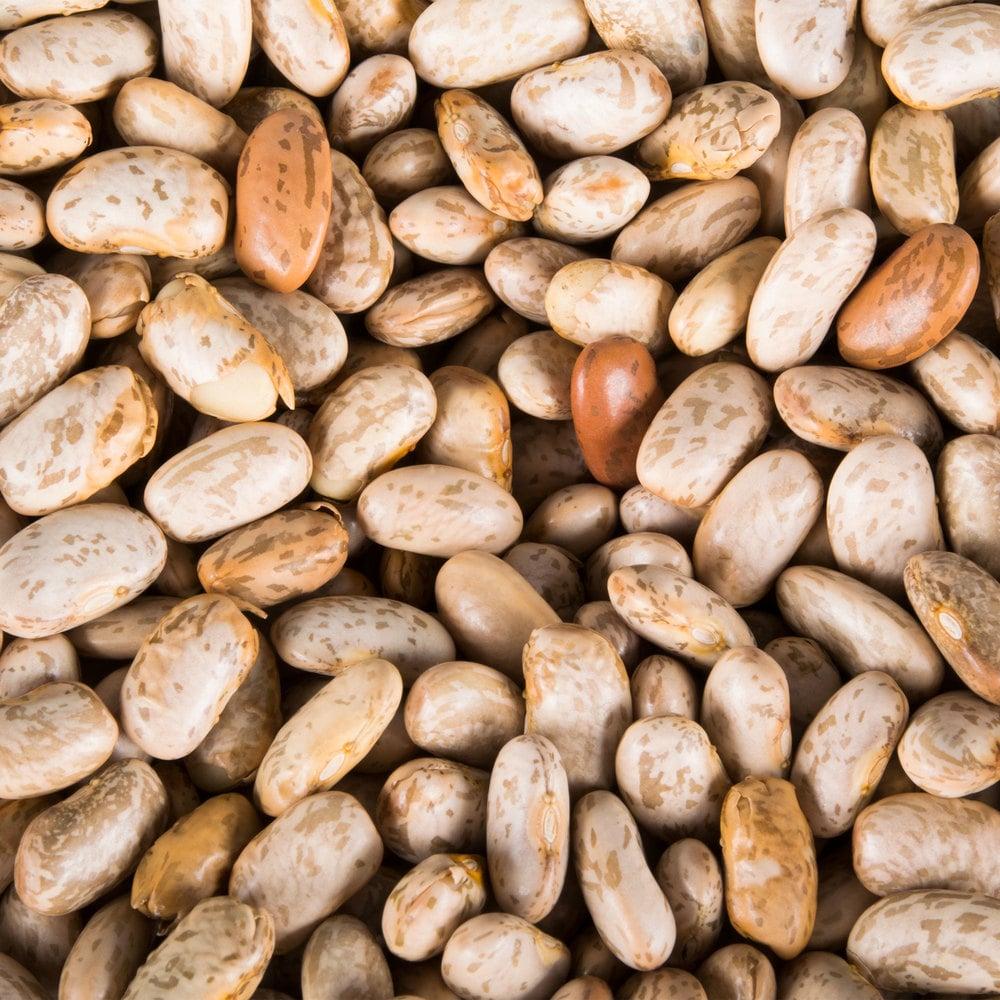 Organic Dried Pinto Beans 25 Lb