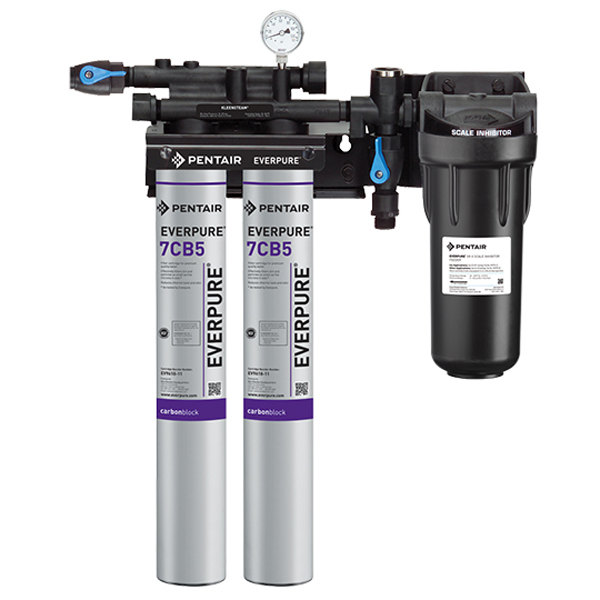 Everpure ev9797 22 kleensteam ii twin water filtration for Everpure water treatment system