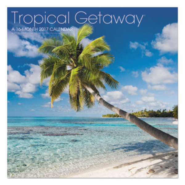 at a glance lml71610 landmark 11 x 12 tropical getaway ForTropical Getaways In December
