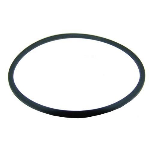 Everpure 309504 Equivalent O-Ring