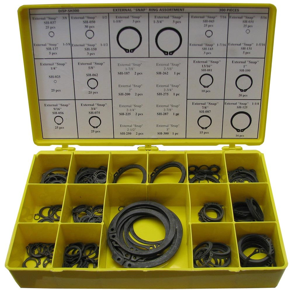 All Points 85-1043 300 Piece Snap Ring Kit