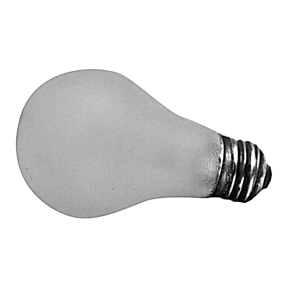 100w Light Bulb: All Points 38-1067 100W Silicone-Coated Rough Service Light Bulb with  Medium Base - 125/130V,Lighting