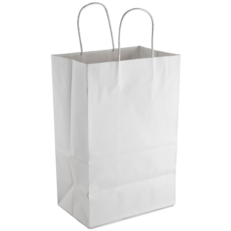 White Shopping Bag with Handles 9 inch x 6 inch x 13 inch 250/Case
