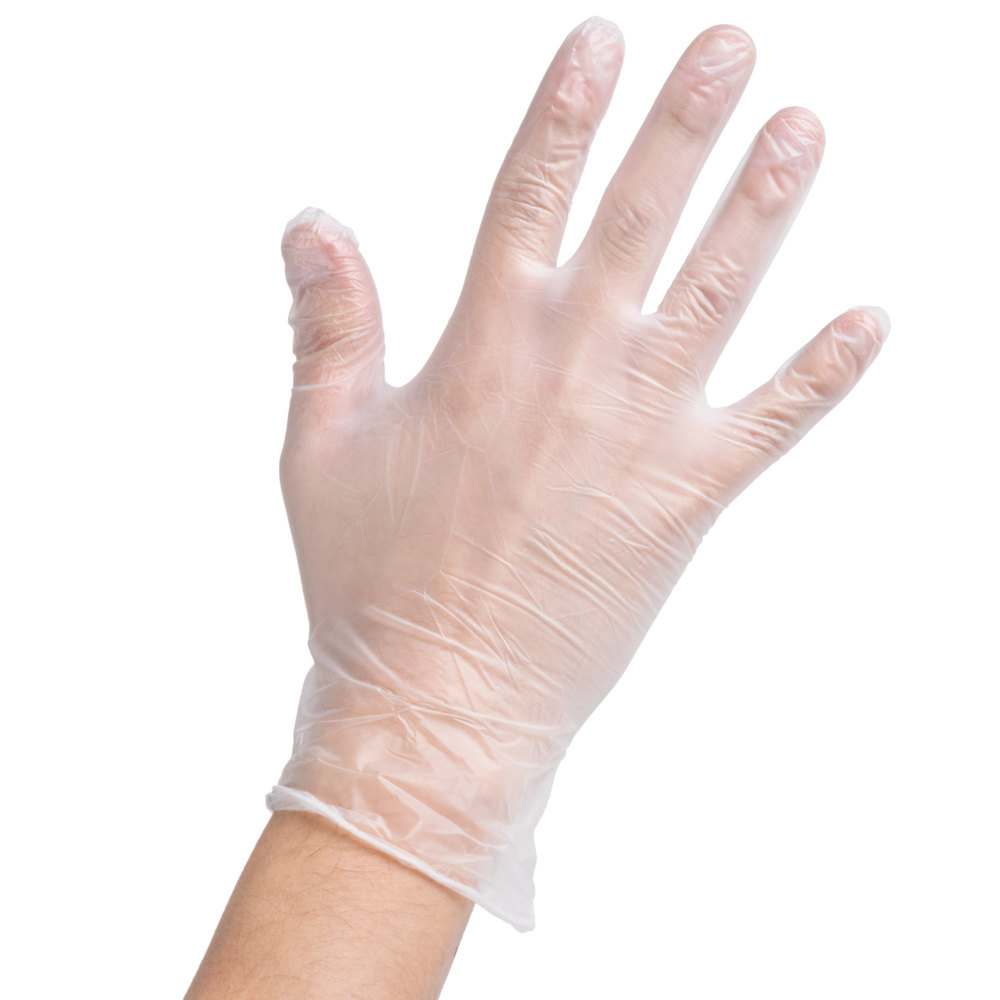 Case of 1000 (10 Boxes of 100) Noble Products Medium Powder-Free Disposable Vinyl Gloves for Foodservice