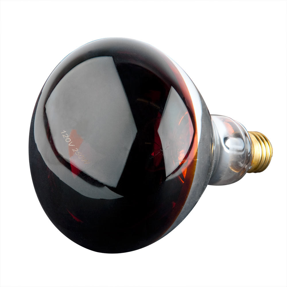 250 Watt Red Infrared Heat Lamp Light Bulb