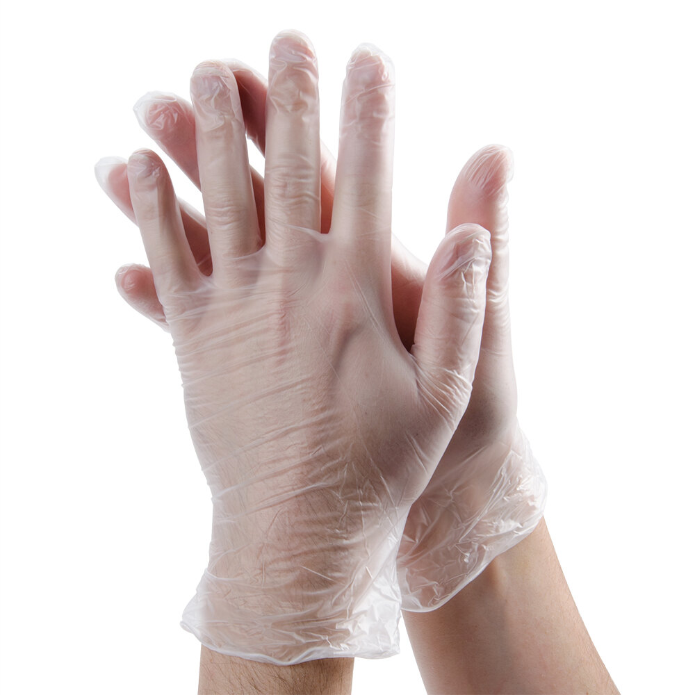 Noble Medium Powder Free Disposable Vinyl Gloves for Foodservice