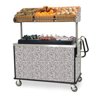 Lakeside 668GS Stainless Steel Vending Cart with Insulated Polyethylene Ice Bin, Overhead Shelf, and Gray Sand Finish - 28 1/2 inch x 54 3/4 inch x 67 inch