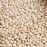 Dried Small Lima Beans - 20 lb.