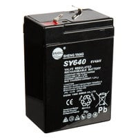 AvaWeigh 6V Rechargeable Battery