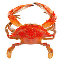 Linton's 5 3/4 inch Lightly Seasoned Steamed Large Maryland Blue Crabs - 72/Case