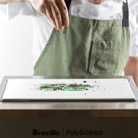 PolyScience CAG700SIL1BUC1 Anti-Griddle Freeze Plate - 120V