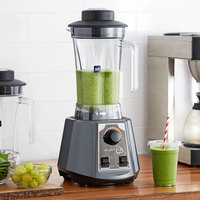 Avamix BL2TVS 2 hp Commercial Blender with Toggle Control, Variable Speed Dial, and Two 64 oz. Polycarbonate Containers