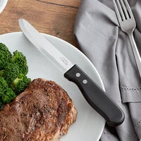 Choice 5 inch Jumbo Stainless Steel Steak Knife with Black Polypropylene Handle - 12/Case