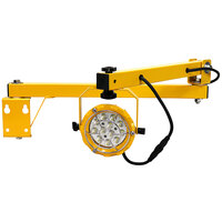 TPI Fostoria DKLED-40-30W LED Loading Dock Light with 40 inch Single Arm - 30W, 3300 Lumens, 120V